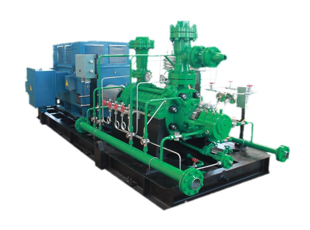 DQTG100-100x8电站起停泵
