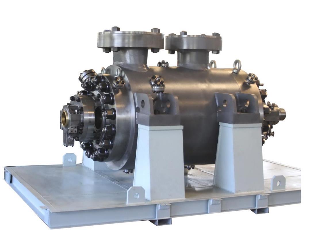 BB5双筒体泵